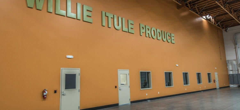 Willie Itule